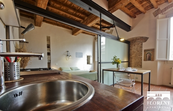 Pitti Studio Apartment panoramic 2