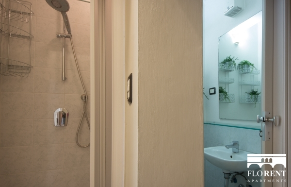 Florence Apartment second bathroom