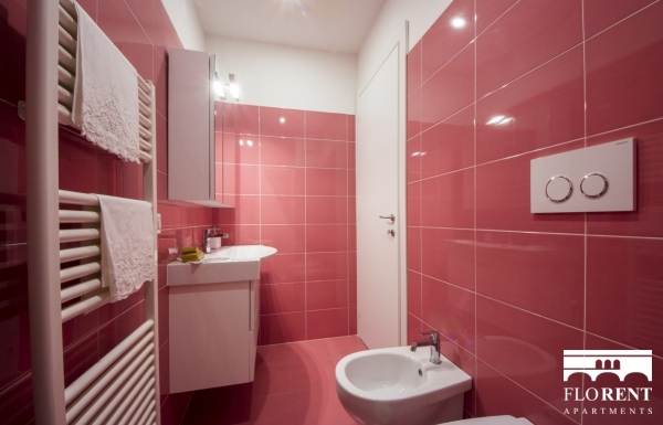 Scala Modern Apartment bathroom