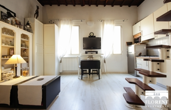 Luxury Studio in Florence panoramic