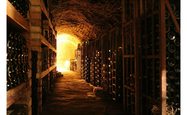 cantine-aperte-tuscan-wineries-open-doors-wine-cellar