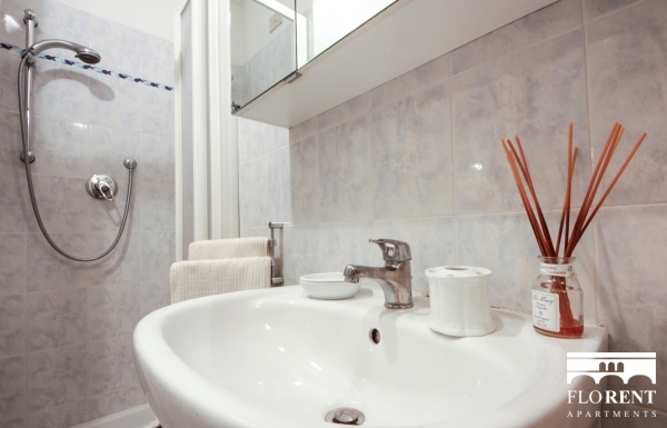 Luxury Studio in Florence bathroom 3