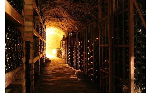 cantine-aperte-tuscan-wineries-open-doors-wine-cellar